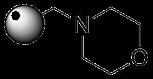Morpholine Structure